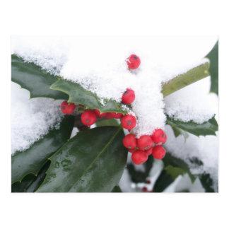 Winter in Alabama Postcard