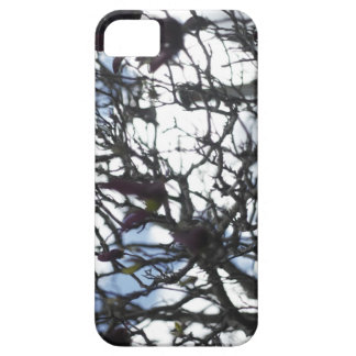 Winter in Bloom iPhone 5 Covers