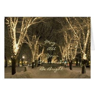 Winter In Boston - Park Scene Card