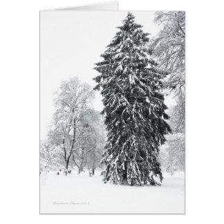 Winter in Boston Public Garden Card