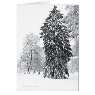 Winter in Boston Public Garden Greeting Card