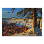 Winter In Bryce Canyon Stationery Note Card