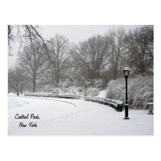 Winter in Central Park Postcard