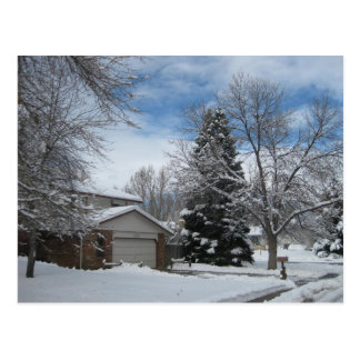Winter in Colorado Postcard