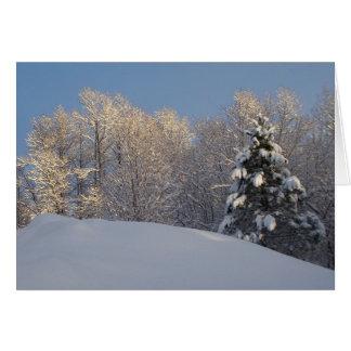 Winter In Maine Card