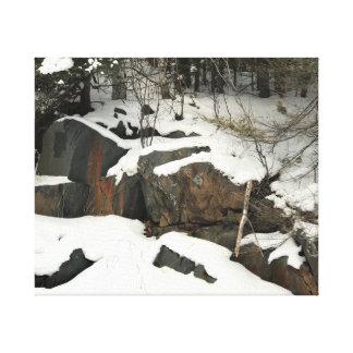 Winter in Michigan's Upper Peninsula on Canvas