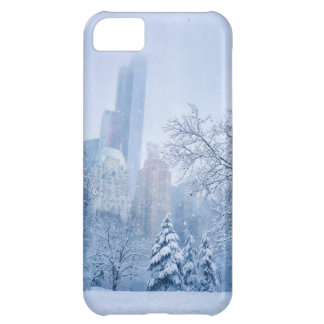 Winter In New York City's Central Park iPhone 5C Case