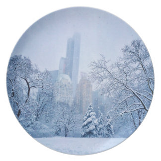 Winter In New York City's Central Park Party Plates