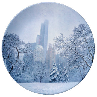Winter In New York City's Central Park Porcelain Plate
