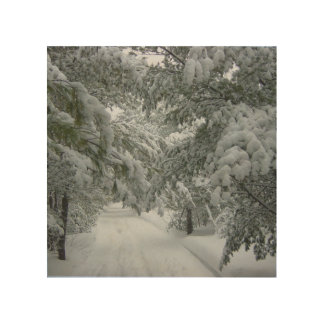 Winter in the Forest Wood Canvases