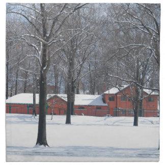 Winter in The Park Napkin