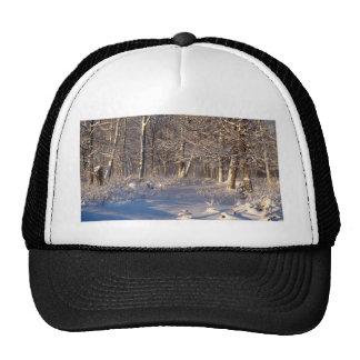 Winter in the Sugar Bush Cap