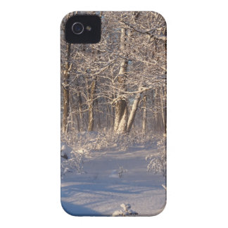 Winter in the Sugar Bush iPhone 4 Cases