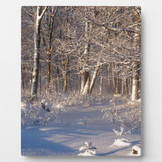 Winter in the Sugar Bush Plaque