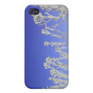 Winter iPhone 4 Cases