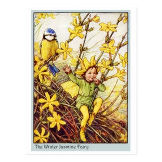 Winter Jasmine  Fairy Postcard