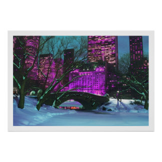 Winter Landscape Central Park New-York Poster