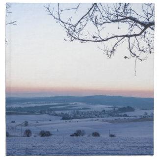 Winter landscape in Germany in the morning Napkin