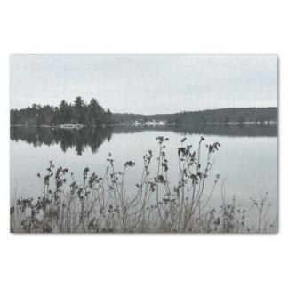 Winter Landscape Michigan Tissue Paper