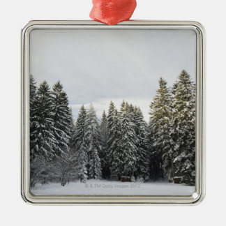 Winter Landscape near Koenigsfeld, Black Forest, Metal Ornament