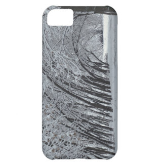 Winter Landscape Photo iPhone 5C, Barely There iPhone 5C Case
