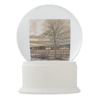Winter Lane Snow Globes