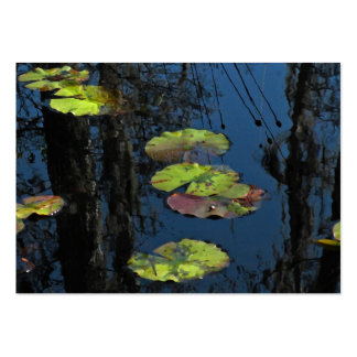 Winter Lily Pond ATC Pack Of Chubby Business Cards