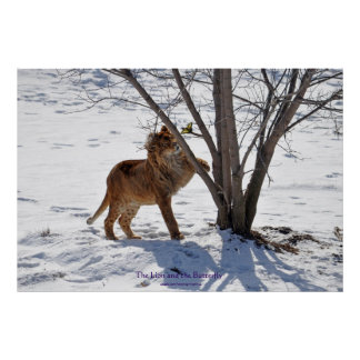 Winter Lion & Butterfly Wildlife Photo Print