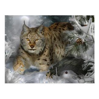 Winter Lynx Postcard