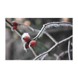Winter magic stretched canvas print