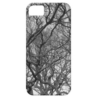 Winter Magnolia Branches in Early Spring Case For The iPhone 5