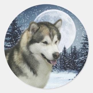 Winter Malamute Sticker