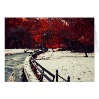 Winter Meets Fall in Central Park, NYC Card