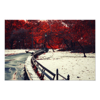 Winter Meets Fall in Central Park, NYC Photographic Print