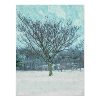 Winter Mimosa Painterly Poster