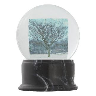 Winter Mimosa Painterly Snow Globes
