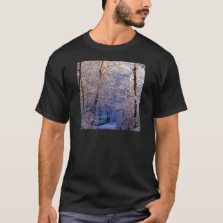 Winter Morning Light Falls Trail Nashville T-Shirt