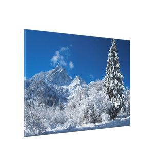 Winter Mountain Wonderland Canvas Print
