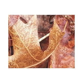 Winter Oak Leaf Canvas Prints