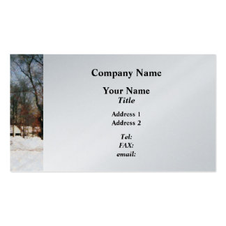 Winter on My Street Pack Of Standard Business Cards