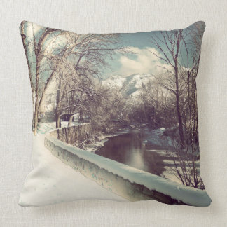 Winter on the Ogden Cushion