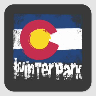 Winter Park Grunge Flag Square Sticker