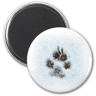 Winter Paw Print 6 Cm Round Magnet