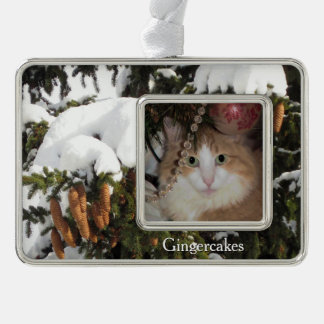 Winter Picture and Custom Photo Christmas Ornament Silver Plated Framed Ornament