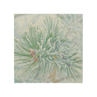 Winter Pine Wood Prints