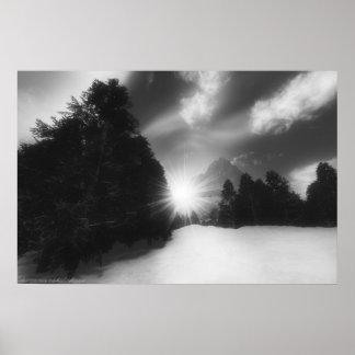 Winter Pines Sunset Print
