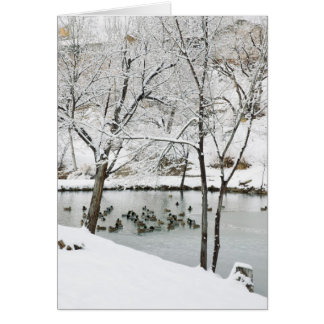 winter pond holiday card