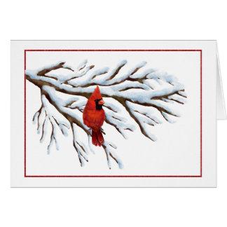 Winter Red Cardinal Notecard