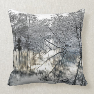 Winter Reflections Cushion
