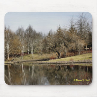 Winter Reflections Mouse Pad